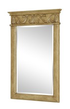 Elegant VM-1002 - Danville 25 in. Traditional Mirror in Antique Beige